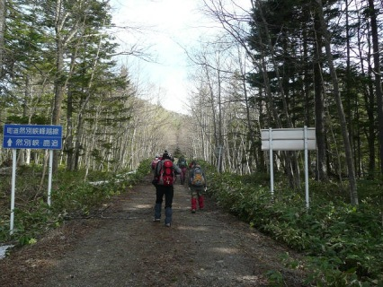 林道を歩く