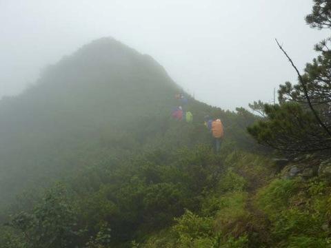 頂稜の最高地点も霧
