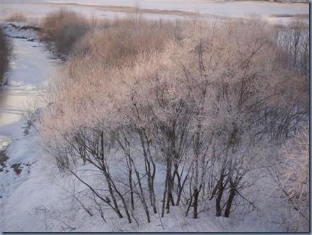 樹氷も終わりかな