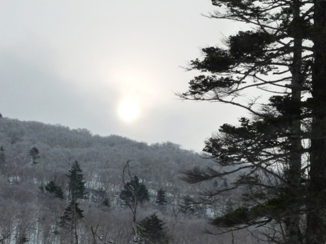 樹氷の向こうに朝日がぼんやり