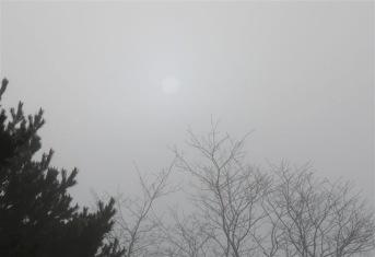 濃霧と太陽