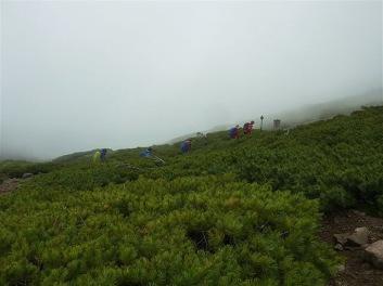 ハイマツ帯を下山