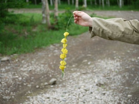 黄色の首飾り~♪