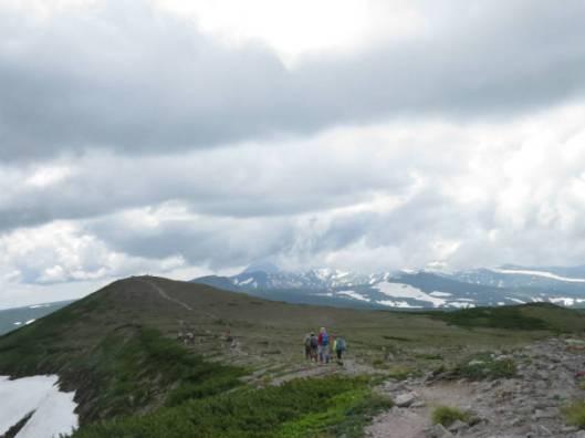 s2013-07-21 緑岳~白雲避難小屋 039緑岳山頂に向かうお花畑