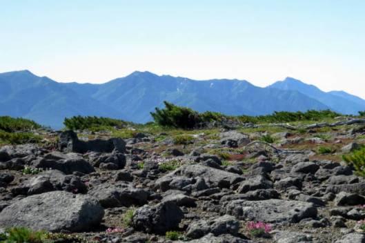 s2013-08-03 赤岳~黒岳縦走 019石狩連峰の後方にニペ