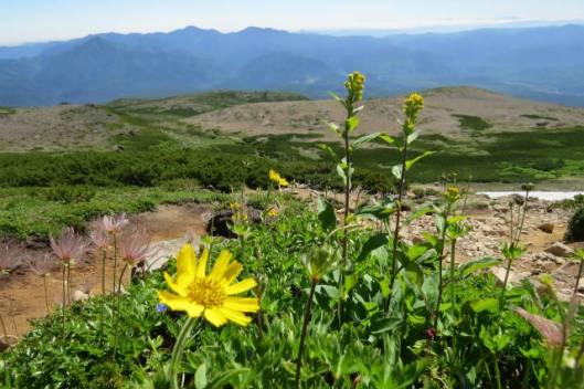 s2013-08-03 赤岳~黒岳縦走 050
