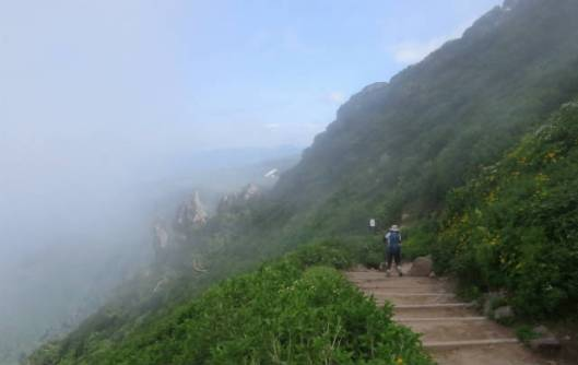 s2013-08-03 赤岳~黒岳縦走 200チシマキンバイの咲く登山道