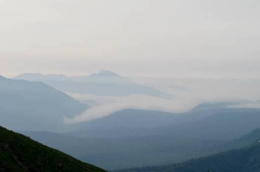 s2013-08-08 白雲避難小屋~高根が原~忠別岳 070雲海に浮かぶニペ