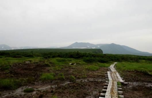 s2013-08-08 白雲避難小屋~高根が原~忠別岳 093