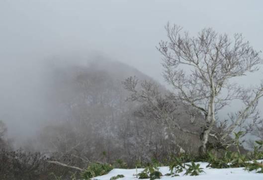 2013-10-20 伏美岳転じてオダッシュ山 046