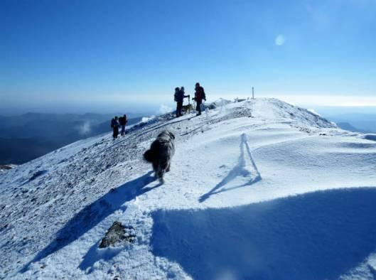 2013-11-24 雌阿寒岳 044