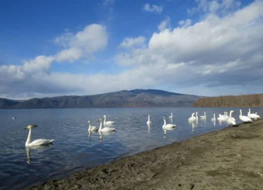 2013-11-30 摩周湖と藻琴山 190