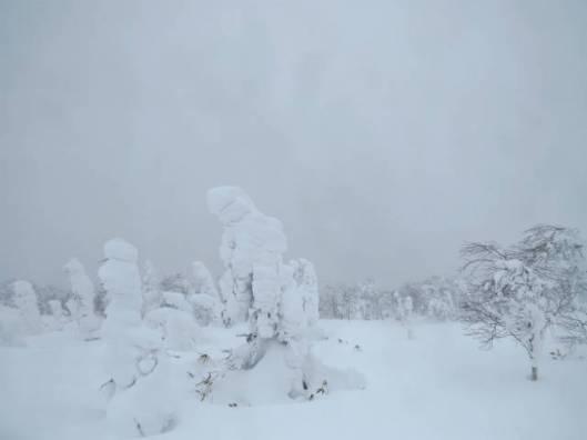 2014-01-11 佐幌岳新年会 042
