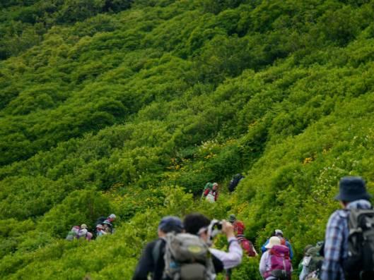 黒岳B 2014-07-24 010
