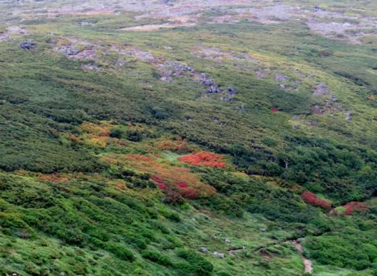 ニセカウ、赤岳 2014-08-25 114