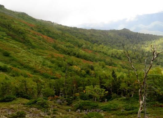 ニセカウ、赤岳 2014-08-25 124