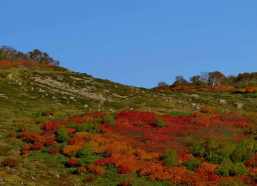 赤岳登山 2014-09-22 007