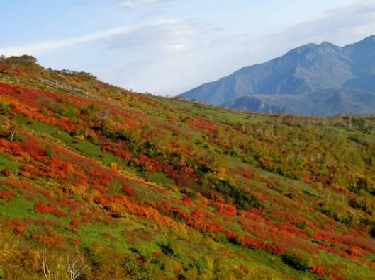 赤岳登山 2014-09-22 032