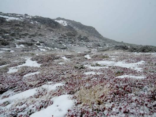 赤岳登山 2014-09-22 148