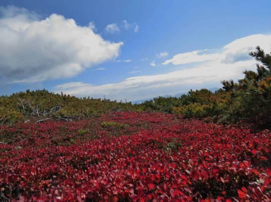 赤岳登山 2014-09-22 255