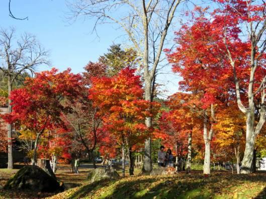 ユニ石狩と糠平の紅葉 2014-10-05 149