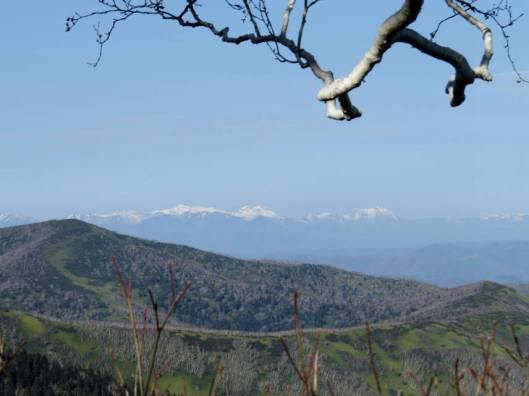 ペケレベツ岳 2014-10-26 032