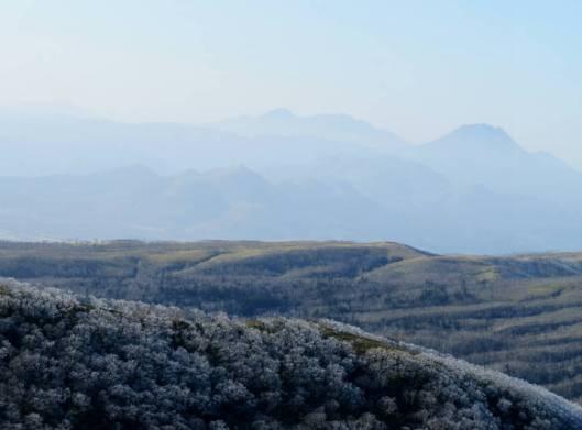 西別岳 2014-11-29 077