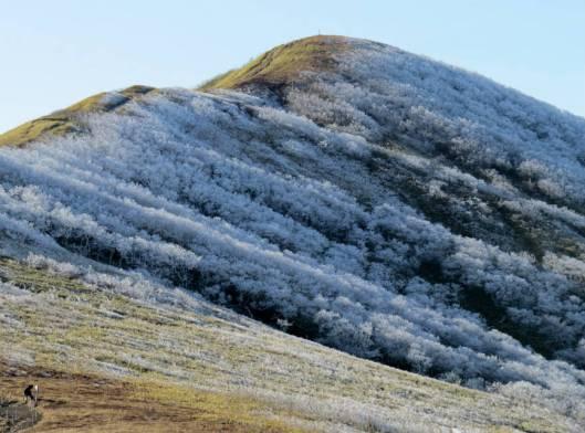 西別岳 2014-11-29 089