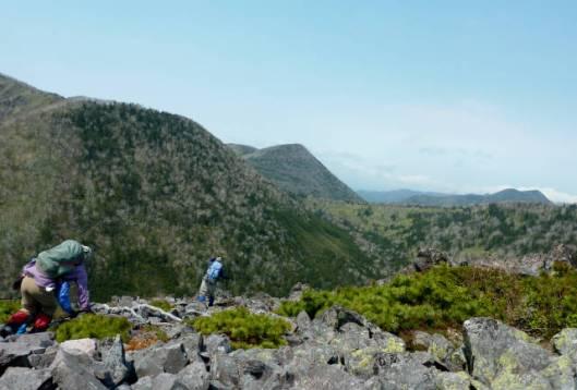 岩石山~白雲山 2015-05-24 025
