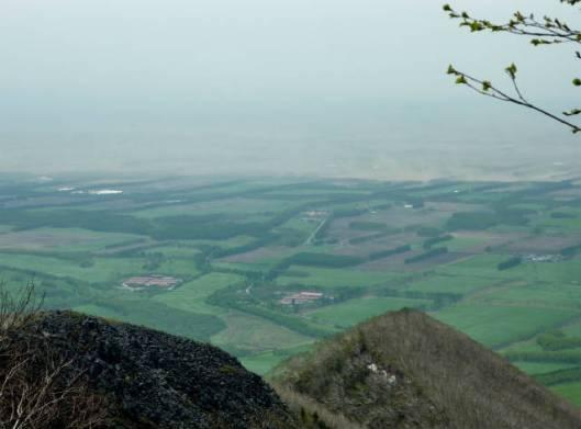 岩石山~白雲山 2015-05-24 028