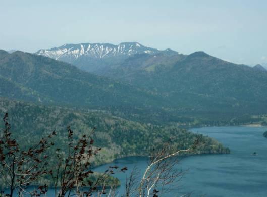 岩石山~白雲山 2015-05-24 033
