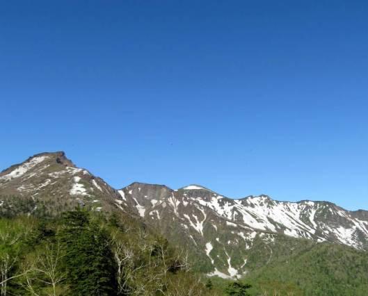 黒岳 2015-06-12 016