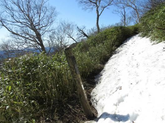 黒岳 2015-06-12 029