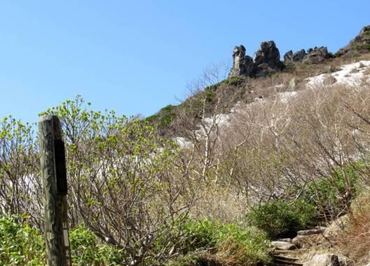 黒岳 2015-06-12 036