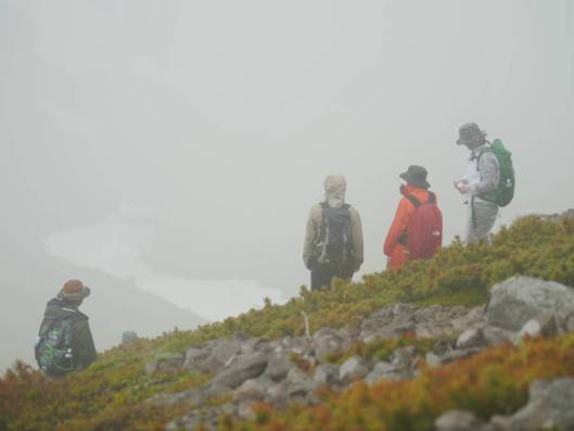 緑岳A 2015-07-04 029