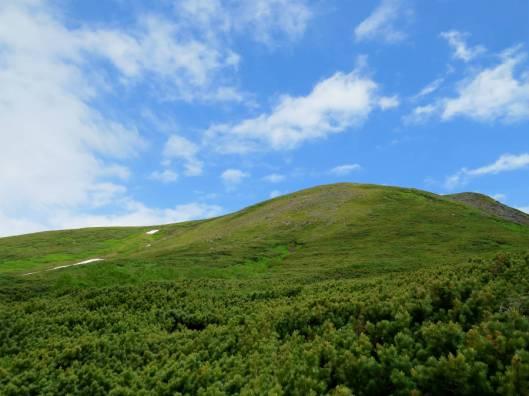緑岳B 2015-07-04 036