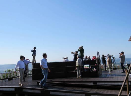 タカの渡りの調査 2015-09-23 010