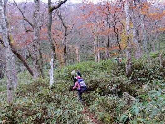 楽古岳 2015-10-18 016